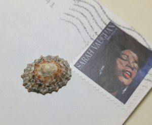 Tiny Shell and Stamp